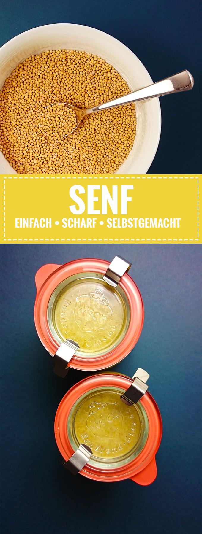 Senf Grundrezept // Einfach, scharf, lecker! // Knabberkult.de